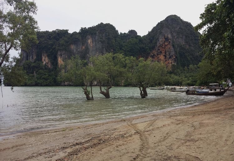 east railay.jpg